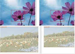 ラスター画像の相違の表示例